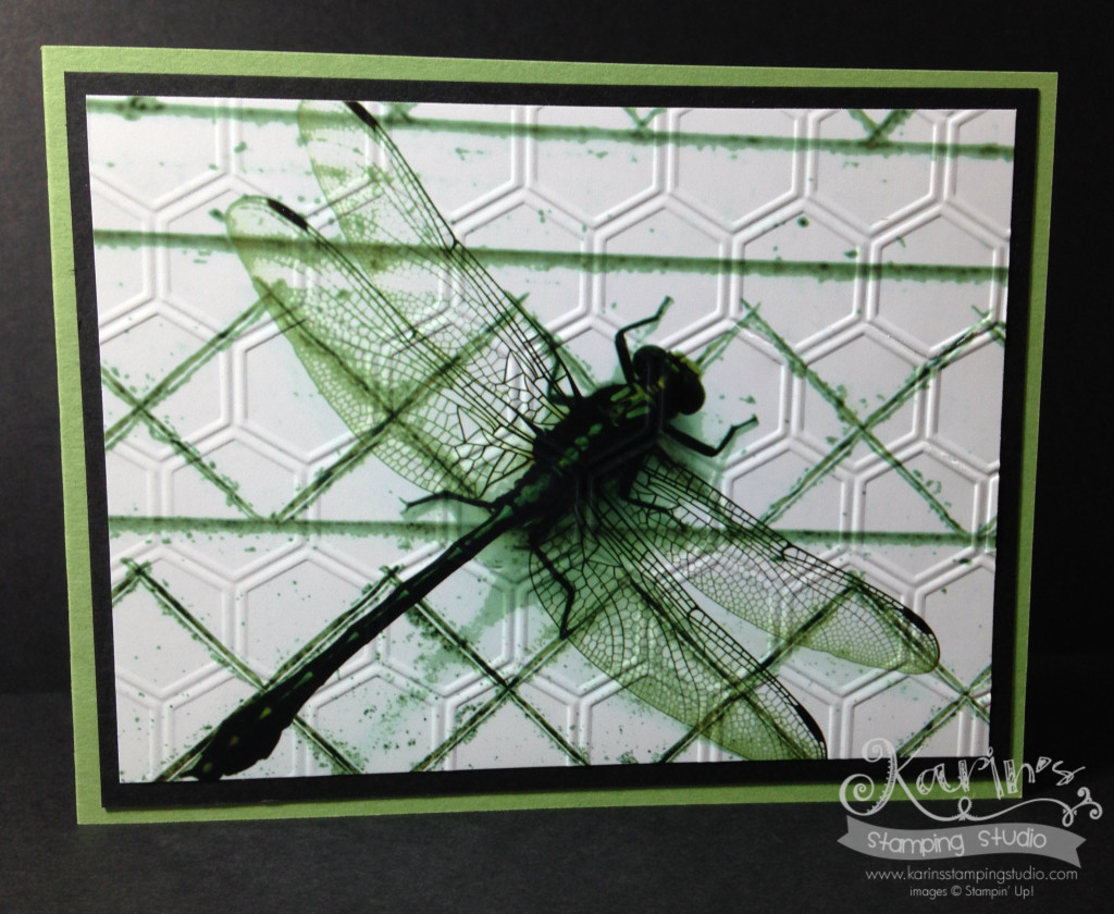 Dragonfly emboss